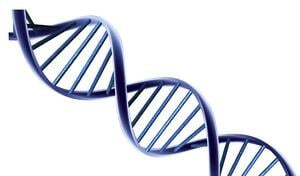 tapping-into-individual-sales-dna
